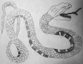 Illustration snake